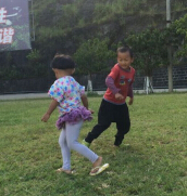 紫江林场的夏天